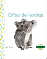 Crías de koalas