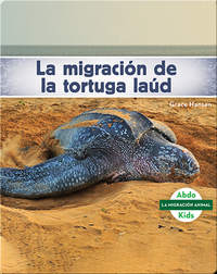 La migración de la tortuga laúd