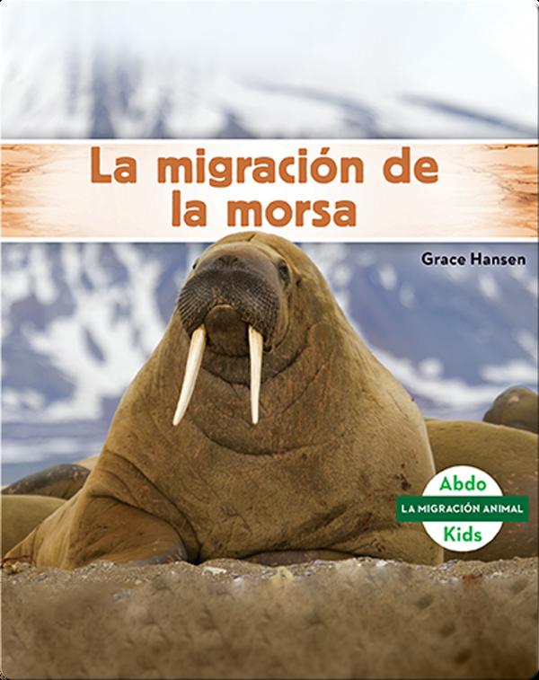 La migración de la morsa