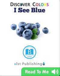 Discover Colors: I See Blue