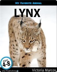 My Favorite Animal: Lynx