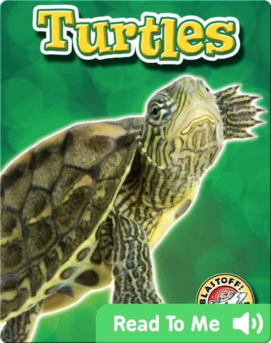 Turtles: Backyard Wildlife