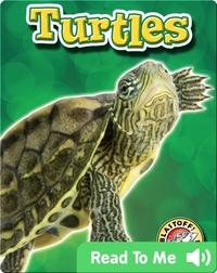 Turtles: Backyard Wildlife