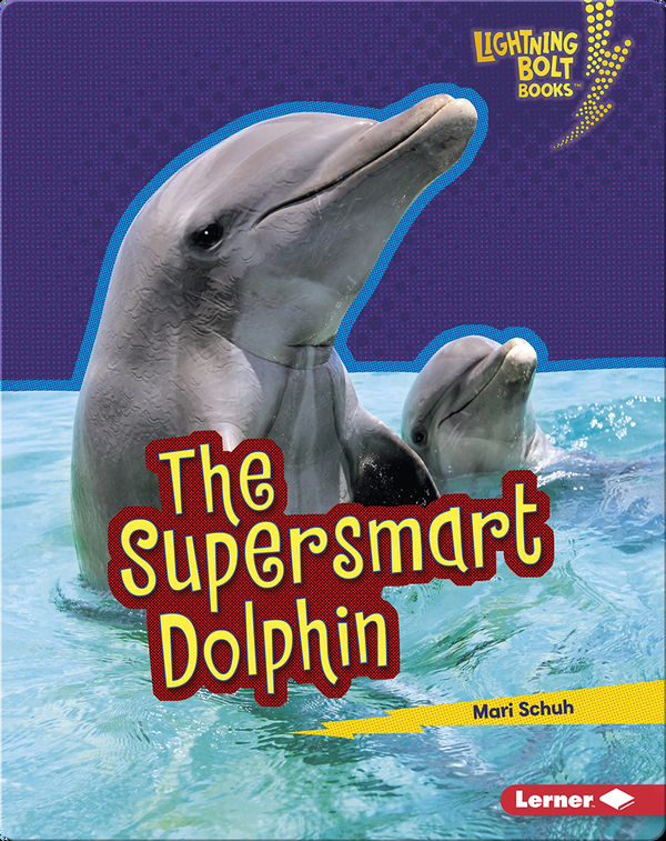 The Supersmart Dolphin
