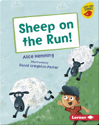 Sheep on the Run!