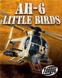 AH-6 Little Birds