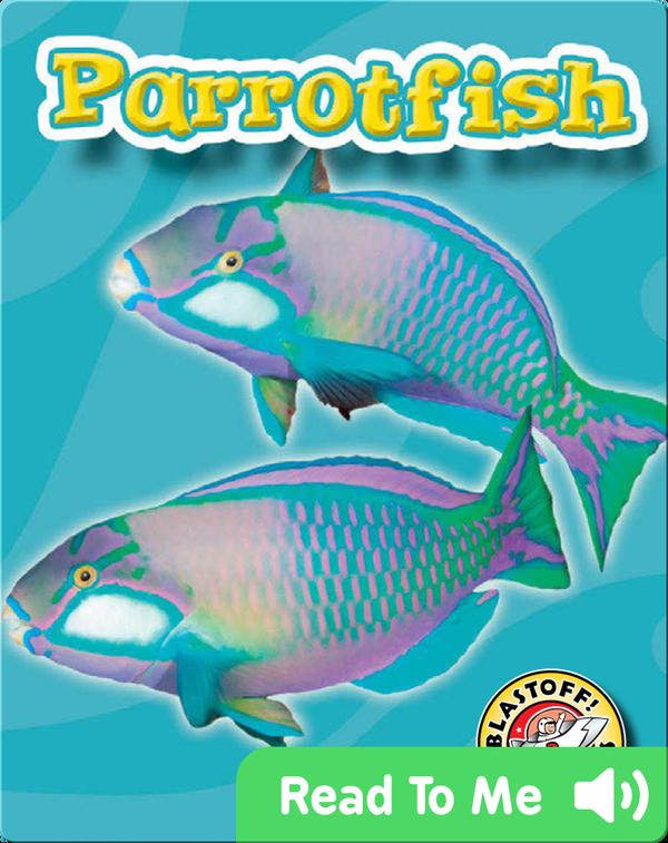 Parrotfish: Oceans Alive