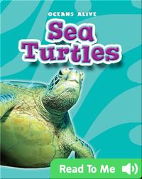 Sea Turtles: Oceans Alive