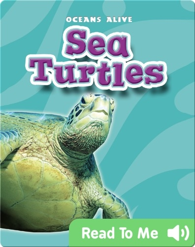 Sea Turtles: Oceans Alive