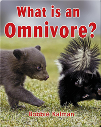What is an Omnivore?
