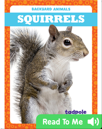 Backyard Animals: Squirrels