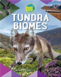 Tundra Biomes