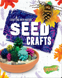 Crafting With Nature: Seed Crafts
