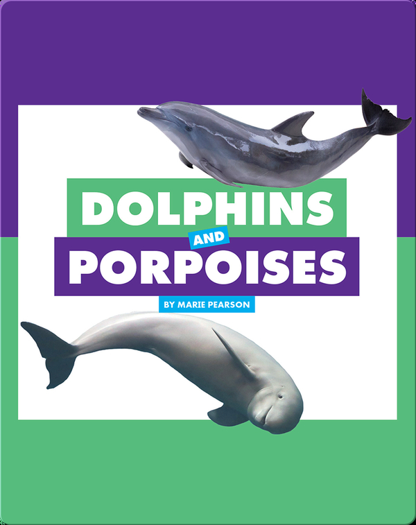 Comparing Animal Differences: Dolphins and Porpoises