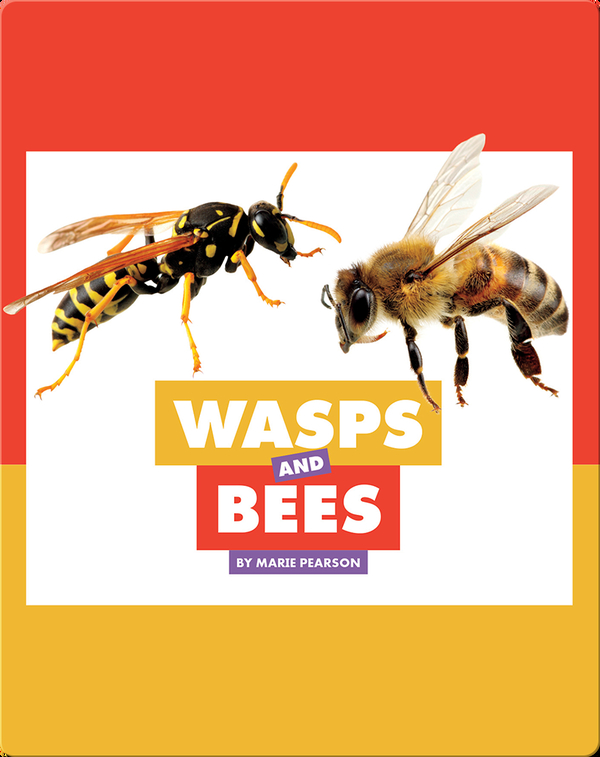 Comparing Animal Differences: Wasps and Bees
