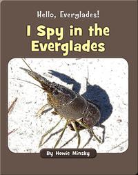 Hello, Everglades!: I Spy in the Everglades