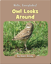 Hello, Everglades!: Owl Looks Around