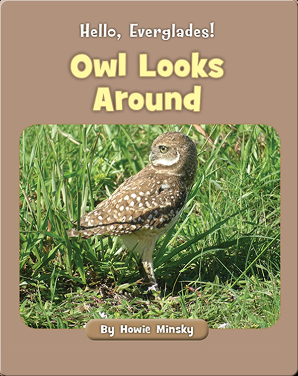 Hello, Everglades!: Owl Looks Around