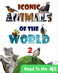 Iconic Animals of the World 2