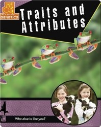Traits and Attributes