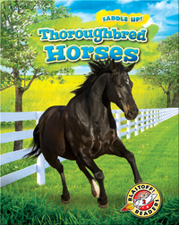 Saddle Up!: Thoroughbred Horses
