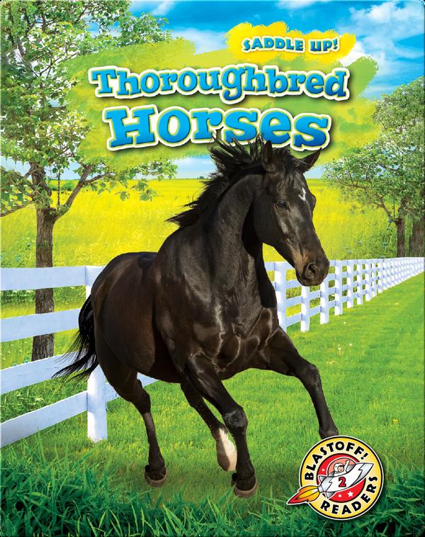 Saddle Up!: Thoroughbred Horses