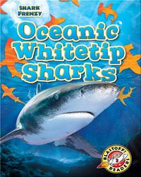 Shark Frenzy: Oceanic Whitetip Sharks