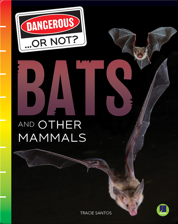 Dangerous...or Not?: Bats and Other Mammals