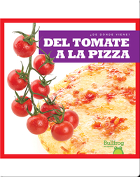 Del tomate a la pizza (From Vine to Pizza)