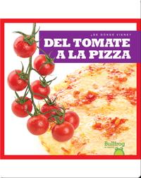 Del tomate a la pizza (From Vine to Pizza)