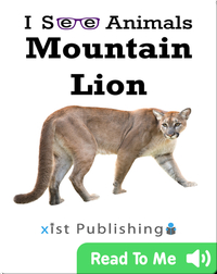 I See Animals: Mountain Lion