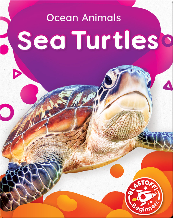 Ocean Animals: Sea Turtles