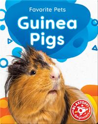 Favorite Pets: Guinea Pigs