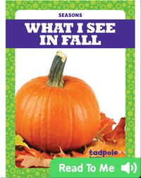 Seasons: What I See in Fall