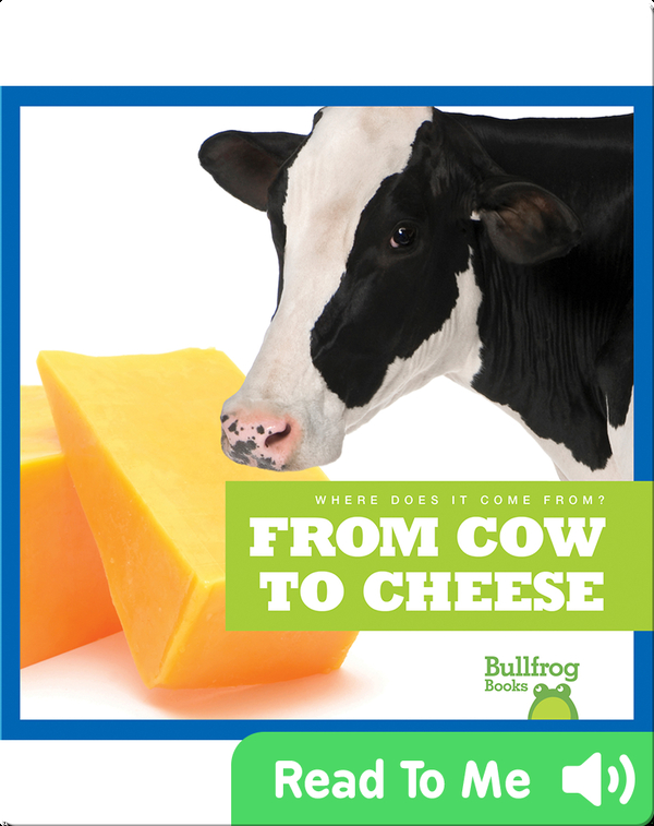 Where Does It Come From?: From Cow to Cheese