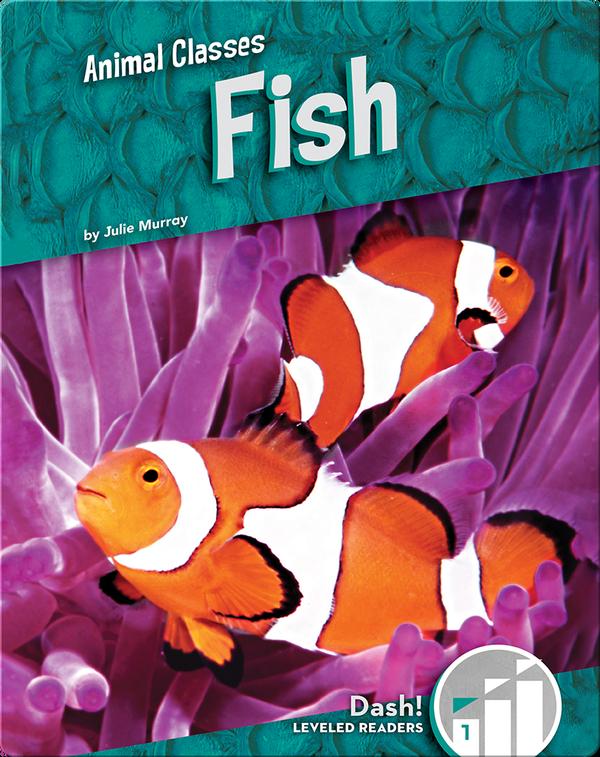 Animal Classes: Fish