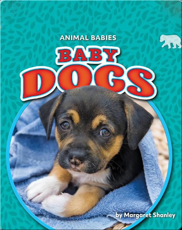 Animal Babies: Baby Dogs