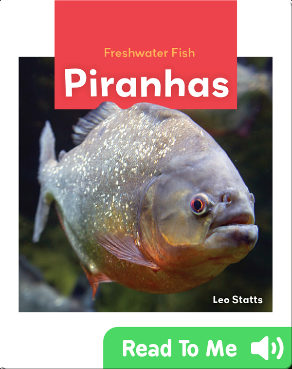 Freshwater Fish: Piranhas