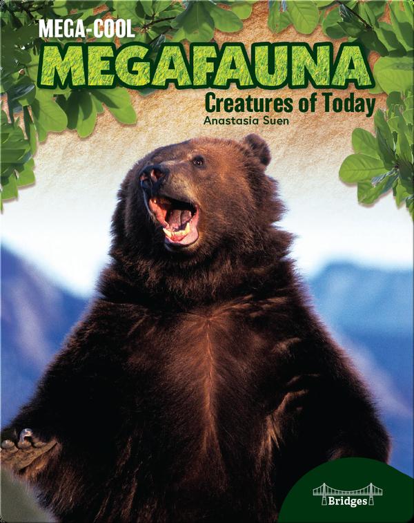 Mega-Cool Megafauna: Creatures of Today