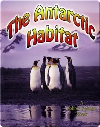 The Antarctic Habitat