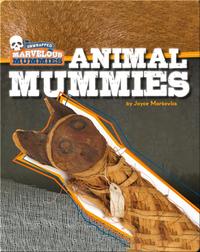 Marvelous Mummies: Animal Mummies