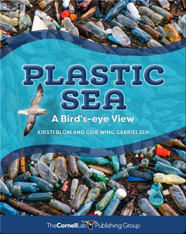 Plastic Sea: A Bird's-Eye View