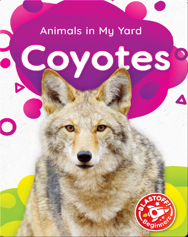 Animals in My Yard: Coyotes