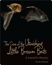 The Case of the Vanishing Little Brown Bats: A Scientific Mystery