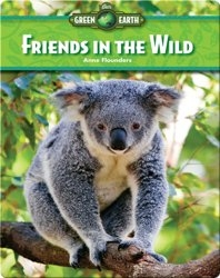 Friends in the Wild