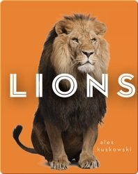 Zoo Animals: Lions