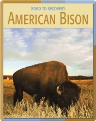 Road To Recovery: American Bison