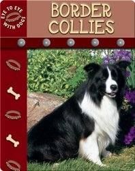 Eye To Eye With Dogs: Border Collies