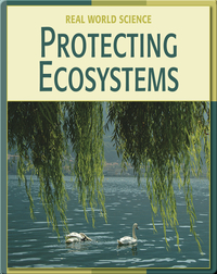 Real World Science: Protecting Ecosystems