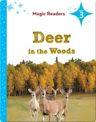 Magic Readers: Deer in the Woods